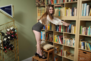Alice March in Librarian